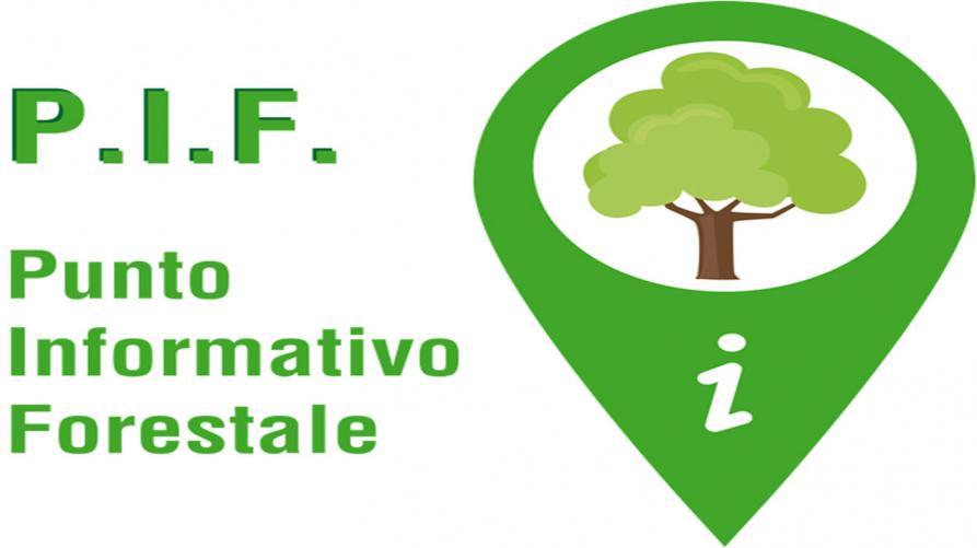 Calendario Taglio Legna 2020.Punti Informativi Forestali P I F Regione Piemonte