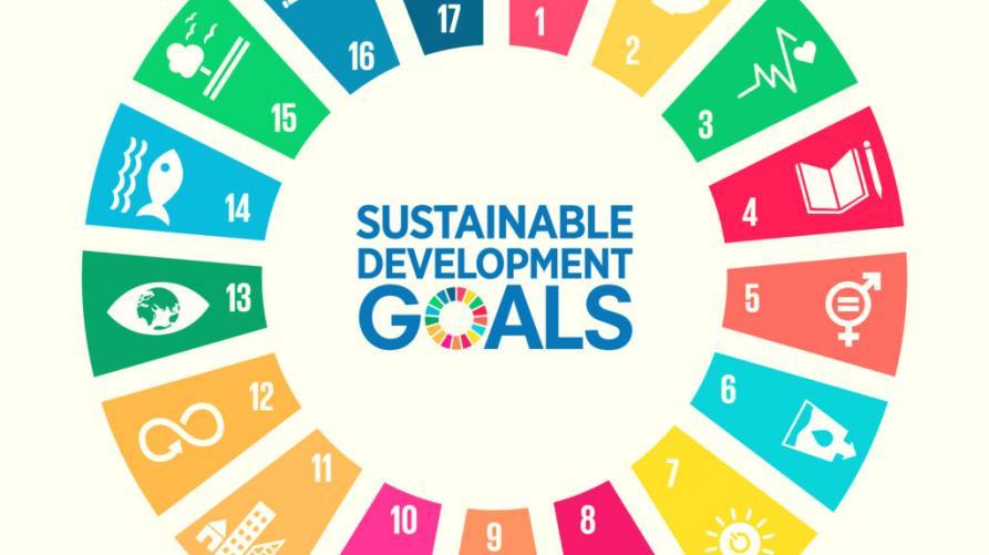 L Agenda Mondiale Per Lo Sviluppo Sostenibile Regione Piemonte